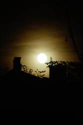 little moon of horror