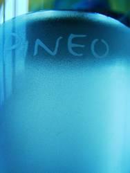 Pineo 2