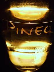 Pineo 1