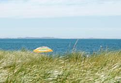 Sommer, Sonne, Meer und ... Strand?