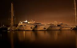 Harbour Nights