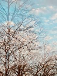 Herbst Winter Doppelbelichtung
