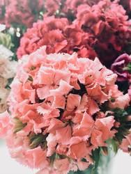 Sommerblumenstrauß