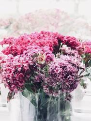 Doppelbelichtung Blumenstrauß