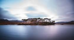 Pinsel Insel
