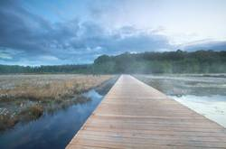 wooden road over lake in morning
