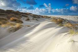 sand dunes by North sea beach on sunny day, Texel, Netherlands
