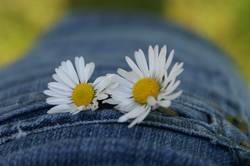 Blüüümchen