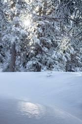 Glitzern im Schnee