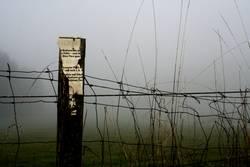 Eingezäunter Nebel