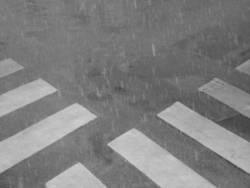 kreuzung der zebrastreifen