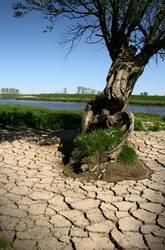 Klima als solches ist noch keine Katastrophe
