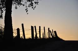 Umzäunter Sonnenuntergang
