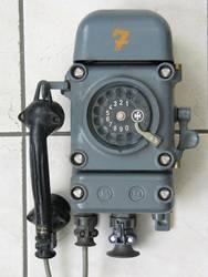 dFWT  1977