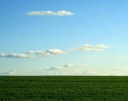 Hinterm Horizont......
