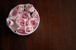 Rosarote Impressionen