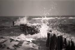 Das Brechen der Welle
