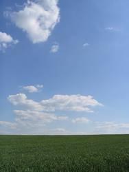 Wolken überm Gras