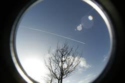 Baum, Himmel, Flugzeug