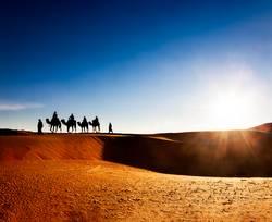 Exotisches Abenteuer: Turist Reiten Kamele auf Sanddünen