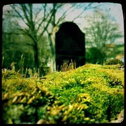 graveyard. poem.