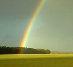 0815 Regenbogen