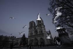 Schatz, Paris im Winter ist furchtbar