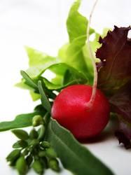so´n salat