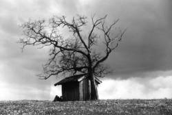 Hütte im Regen
