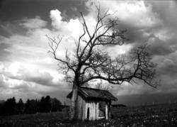 Hütte unter den Wolken