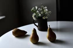 Drei Abate Birnen auf weißem Tisch mit weißen Herbstblumen