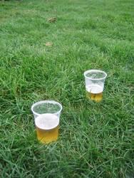 Bier auf Wiese