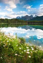 Herbert Lake in Banff National Park, Canada