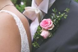 Verliebte Rosarosen mit Brautpaar