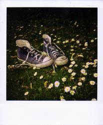 Polaroidchucks
