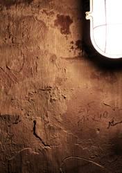 cellarwall