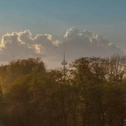 UT Köln | Rheinufer Schäl Sick | Colonius blickt durch.