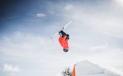 Skiing Freestyle I