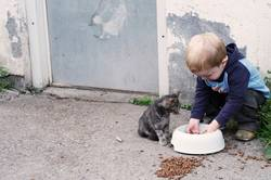 Liebe auf den 1.Blick Teil 2 oder wer wem das Essen stahl...