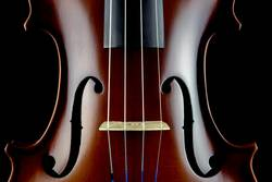 Violin Body Middle Section View on a Black Background