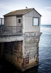 Gull on Rusted Pier and Building in California Seascape