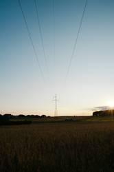 Stromleitungen im Sonnenuntergang