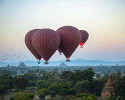 Vögel und Heißluftballons über Bagan
