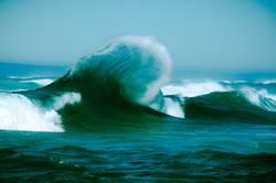 Welle frisch gekämmt