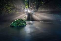 Nebel und durchbrechende Sonne am Fluß