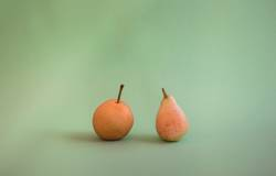 Two different kinds of pears: Nashi pear and San Juan pear.