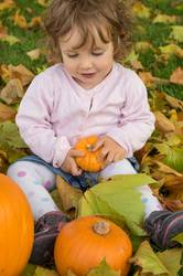 Adorable girl todler embracing pumpkins on an autumn field