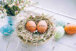 Easter eggs with greeting text stamp next to a window