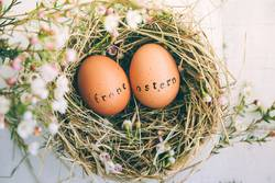 Easter eggs with stamped greeting text in german