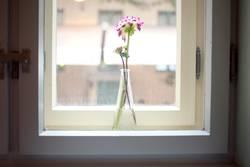 vitrine.